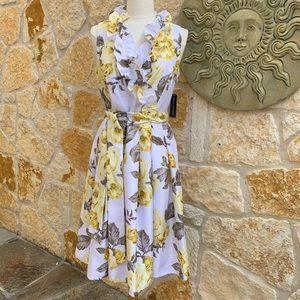 Jessica Howard 8 Sleeveless Ruffed V Neck Dress